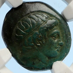 Macedonia Of Philip Ii Ancient Old Greek Coin Apollo Olympic Horse Ngc I95643