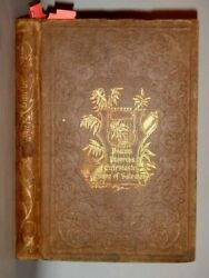1850 Antique Bible Primer Poetical Books American Tract Fowler/henry Wickford Ri