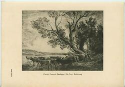 Antique Cow Steer Herd Ford Shallow River Stream Herder Trees German Old Print