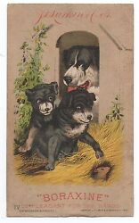 1890s Trade Card For Boraxine W/ Dog And Puppies