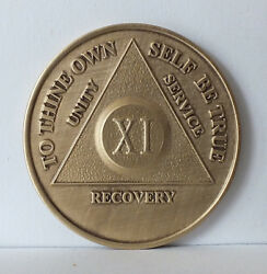 Alcoholic 11 Year Recovery 11 Yr Chip Medallion Coin Medal Token Aa Anonymous