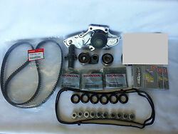 Complete Timing Belt Water Pump And Gasket Kit And Spark Plugs For Acura Honda V6