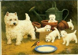 Illustrated Breeds Note Cards (blank) NOS Westie West Highland White Terrier