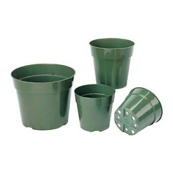 Various Sizes And Qty Green Nursery Flower Pots Veggies Tomato Herb Plants Seeds