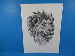 Pen And Ink Lithograph By Donald Hofer Fauna Series 10 X 13 Male Lion Wildlife