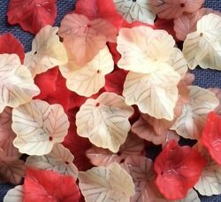 40 Assorted Acrylic Frosted Leaf Mix Autumn Winter Summer 25mm