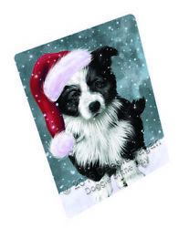 Let it Snow Christmas Holiday Border Collie Dog Woven Throw Sherpa Blanket T128