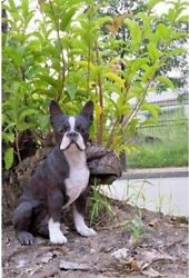 LARGE  BOSTON TERRIER ADULT DOG REALISTIC LIFE-LIKE STATUE HOME GARDEN DECOR
