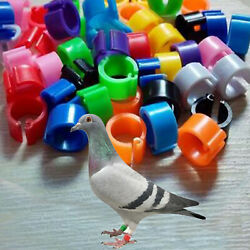 100x Bird Leg Band Rings For Poultry Pigeon Chicken Parrot Bantam Poultry 8mm