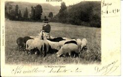 S-17990 France - 15 - Non Situee Cpa   Gely Ed.