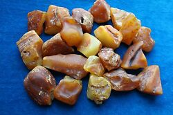 Baltic Amber Stonefrom 5 To 10 Grams 147 Gr