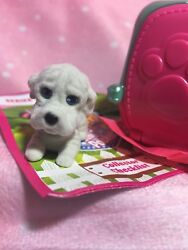 New Puppy In My Pocket Peabody White Shar Pei Dog Series 7 Blind Bag