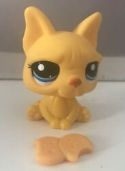 Littlest Pet Shop Dog   French Bulldog Puppy Blue Eyes Authentic Rare Hasbro Lps