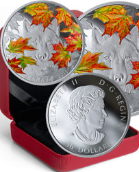 2019 Wily Wolf Iconic Fall Maple Leaf 30 2oz Pure Silver Proof 50mm Coin Canada