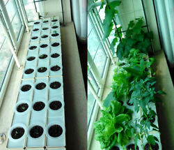 6 Plant Site Hydroponic Grow Kit Square Pipe 110v Pump Baskets Grow System