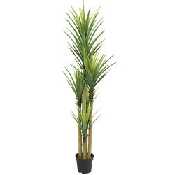 7-Ft. Dracaena Artificial Plant Green Foliage