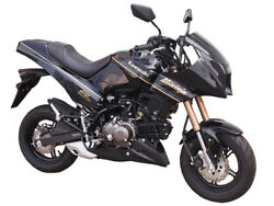 Made To Order Mininja Z125 Exterior Kit Reviving Gpz900r With Paint Grn Or Blk