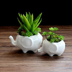 1pcs Elephant Ceramic Pots White Porcelain for Mini Fleshy Creative Flowerpot
