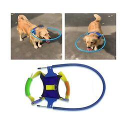Safe Halo Harness for Blind Dogs Soft Protective Vest Ring Anti Collide Wall US