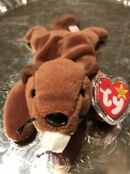 Bucky The Beaver Beanie Baby Rare Mint W/ Errors Pvc 6-8-95 Estate Collection