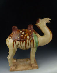 One Large Tri-colored Pottery Camel Statue