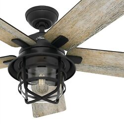 Hunter Fan 54 In Casual Weathered Zinc Ceiling Fan With Light And Remote Control