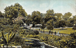 R150960 The Dell Hyde Park. London. P. P. And P