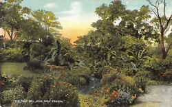 R177306 The Palm Dell. Hyde Park. London. The Star Series. G. D. And D. 1907