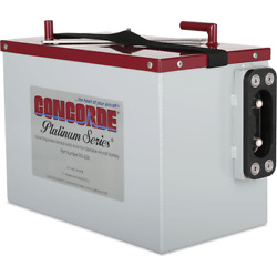 Concorde Platinum Sealed Battery Rg-206 Free Shipping