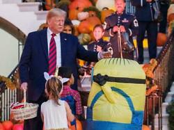 Donald Trump White House Halloween Candy Glossy Poster Picture Photo Banner 5586