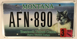 Yellowstone Wildlife Sanctuary Cougar License Plate Beartooth Wild National Park