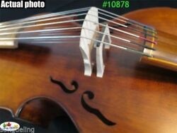 Song Maestro Cope Old Mould 77 Strings Viola Da Gamba 25 1/4 Sweet Tone10878