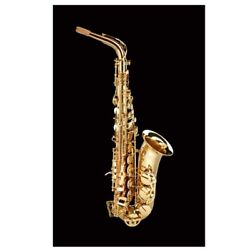 Schagerl Superior Model Alto Saxophone High F With Delux Case
