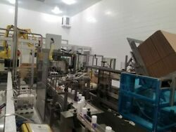 Wepackit case packing station with Fanuc robotic palletizer