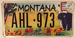 Wildlife Grizzly Bear License Plate Yellowstone Glacier National Park Ours Bandaumlr