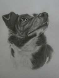 Custom Portraits Petspeoplevehicles Pictures From Photographs Pencil Drawing