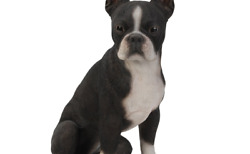 Realistic Life Size Boston Terrier Statue Detailed Sculpture Glass Eyes Hand ...