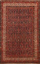 Antique Pre-1900 Vegetable Dye Geometric Traditional Area Rug Hand-knotted 5x7