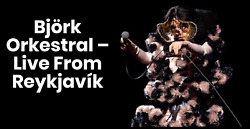 2 Bjork With Orchestra @ Harpa Reykjavik Iceland January 17tth Real 2nd Row