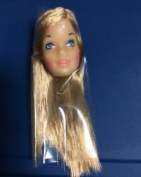 Vintage Barbie Doll Malibu Factory Head Foreign Market From Nrfb Box Of Heads