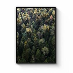 Autumn Forest Nature Photograph Green Wall Art Print Poster Framed Or Canvas