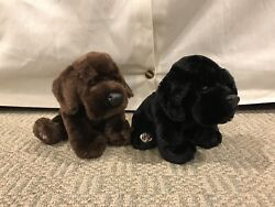 Webkinz Black Lab And Chocolate Lab Lot - Very Good Used Condition - Soft Puppies