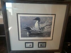 Ducks Unlimited 1988 Print With Stamp 50 Yr Anniversary