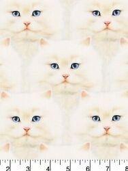 """Blue Eyes Cat Cats On White Stacked Cotton Fabric REMNANT 12""""x44"""" Kittens"""