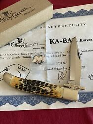 Kabar Dogandrsquos Head Swing Guard Bone Stag Folding Hunter With Coa And Pin