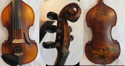 Baroque Style Song Profession Maestro Drawing 5 Strings Violin 4/4 11061