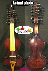 Baroque Style Birdand039s Eye 7andtimes7 Strings 14 Song Concert Solo Viola Dand039amore 3976