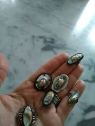 Lot Of Six Antique Victorian Sterling Silver Abalone Blister Pin Brooch And Rings