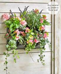 Indoor or Outdoor Wall Planters Planting System