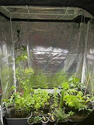 Indoor Hydroponics Grow Kit Tent For Led Grow Light Room Box Plant Growing New
